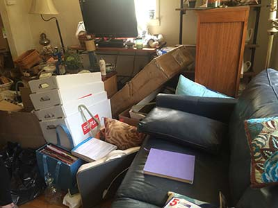 before-downsizing-2014-04-25-13.55.54